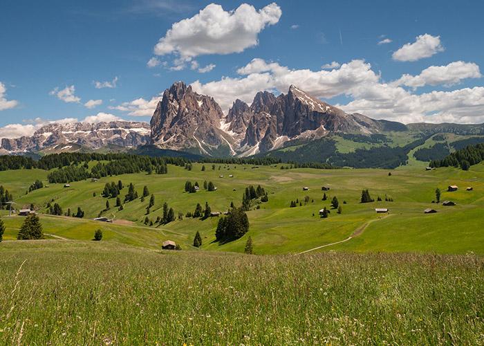 paysage alpes du sud