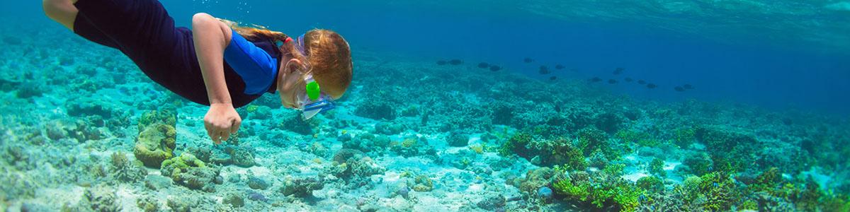 Activité plongée vacances mer